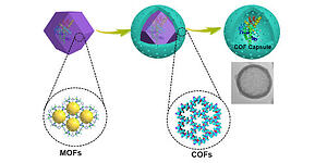 Fabricating Covalent Organic Framework Capsules with Commodious Microenvironment for Enzymes