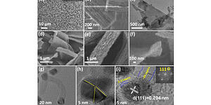 Confined Catalysts Inside CNTs Derived from 2D Metal-Organic Framework for Electrolysis