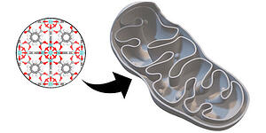 Design of a Functionalized Metal–Organic Framework System for Enhanced Targeted Delivery to Mitochondria