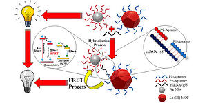 """Ultrasensitive Fluorescent miRNA Biosensor Based on a """"Sandwich"""" Oligonucleotide Hybridization and Fluorescence Resonance Energy Transfer Process Using an Ln(III)-MOF and Ag Nanoparticles for Early Cancer Diagnosis: Application of Central Composite Design"""