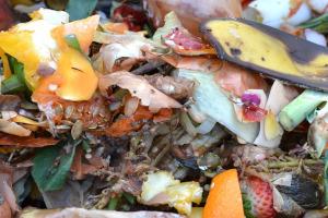 Organic_Waste_WEB