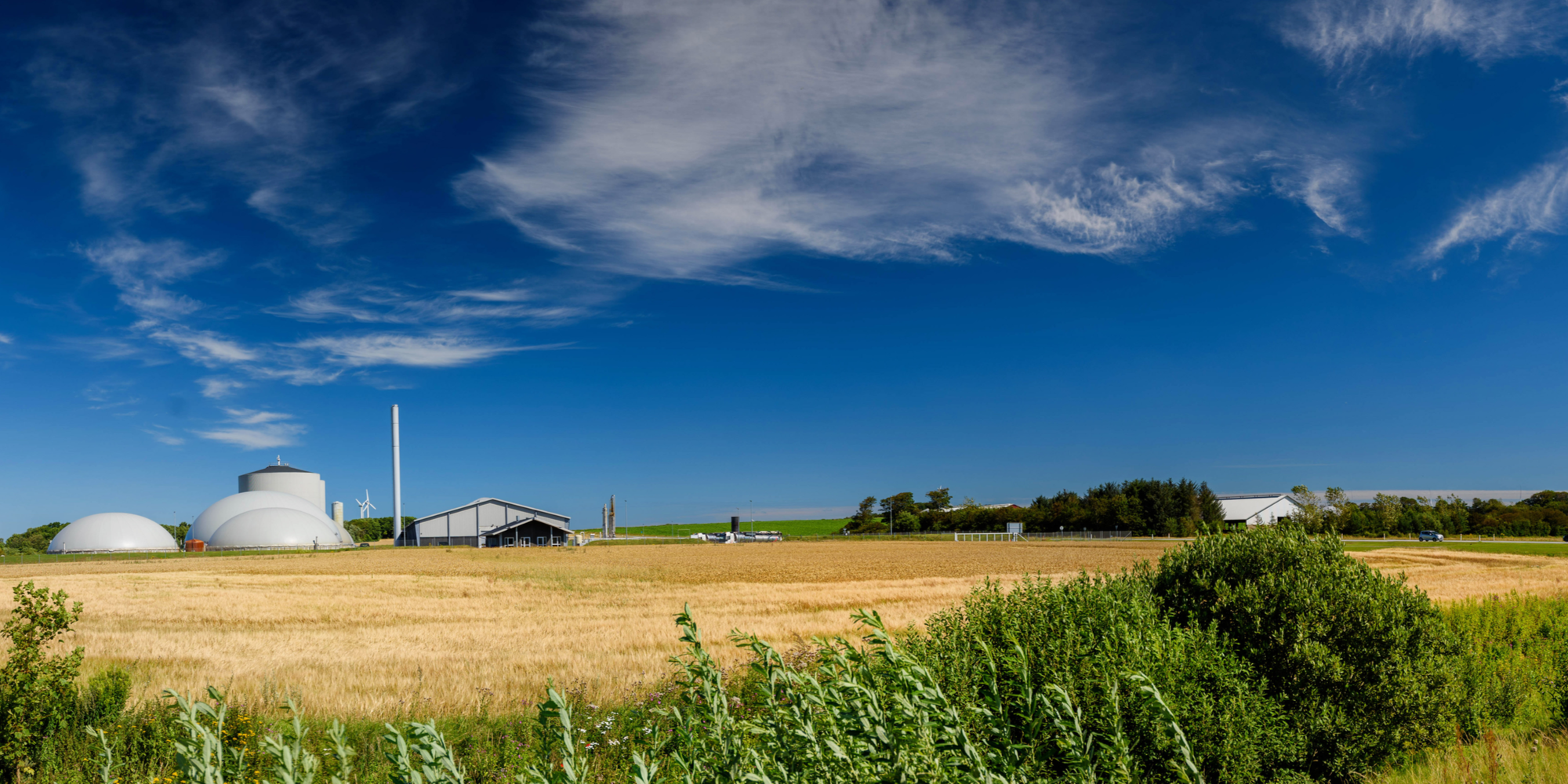 Sorption technologies for biogas upgrading